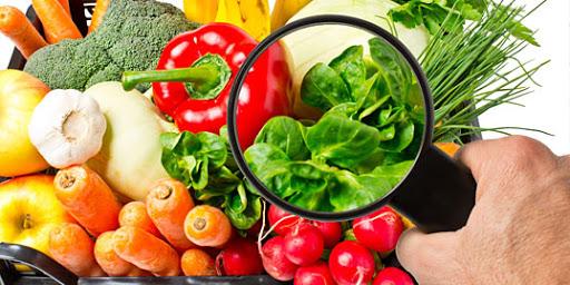 HACCP e revisione del Codex Alimentarius: la Food Safety Culture